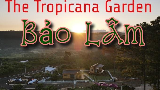 8 ĐIỀU CHỈ THE TROPICANA GARDEN BẢO LÂM MỚI CÓ