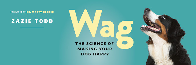 The buzz about Zazie Todd's Wag: The Science of Making Your Dog Happy