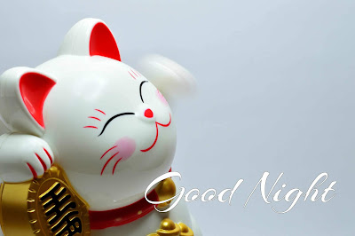 Latest Lovely Good Night Images