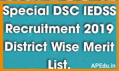 Special DSC IEDSS Recruitment 2019 District Wise Merit List, Provisional Selection List (Phase-I)