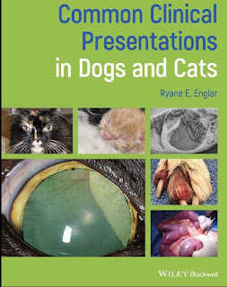 Common Clinical Presentations in Dogs and Cats 1st Edition