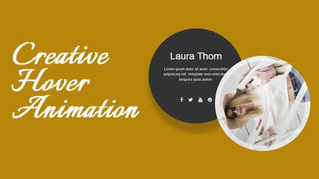 css image hover effect