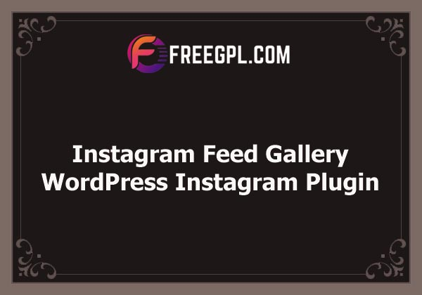 Instagram Feed Gallery — WordPress Instagram Plugin Nulled Download Free