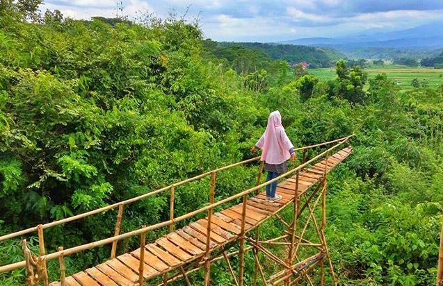 Wisata Batang | Rumah Pohon Villa Bukit Asri Wates Wonotunggal Batang