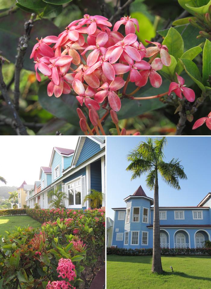 wanderlust, adventure, exploring, globetrotting, ecotourism, Dominican Republic, beach