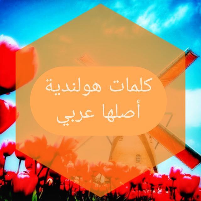 أكثر مما تتوقع.. كلمات هولندية أصلها عربي