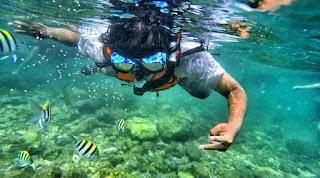 Cari Tempat Snorkeling yang Aman