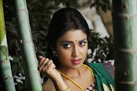 Shriya Saran Latest Glamorous Photos HeyAndhra