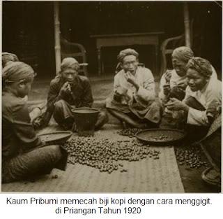 pengolahan kopi zaman belanda di indonesia