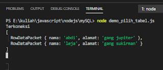 kombinasi node js mysql terminal