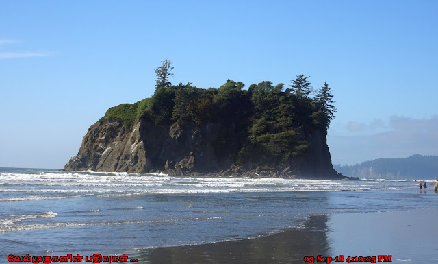 Rugged rock formations Ruby Beach
