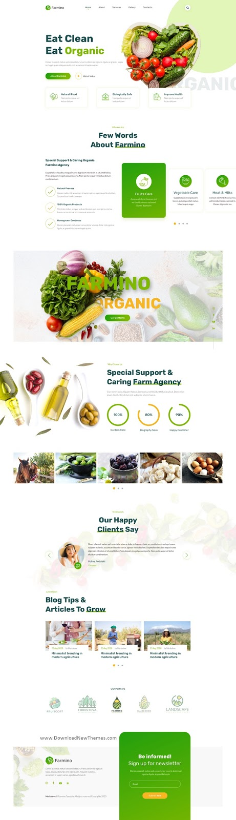 Organic Food Adobe XD Template