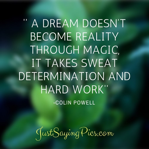 motivational-quote-A-dream doesn't-become reality-through- magic-it-takes -sweat- determination- -and-hard-work