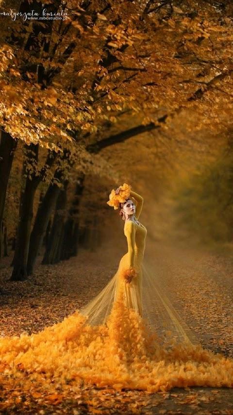 Chiếc váy mùa thu