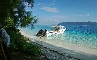 Snorkeling and birding in Raja Ampat