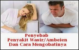 Penyebab Wasir / Ambeien