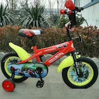 12 Golden Apollo Sepeda Anak BMX