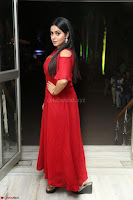 Poorna in Maroon Dress at Rakshasi movie Press meet Cute Pics ~  Exclusive 125.JPG