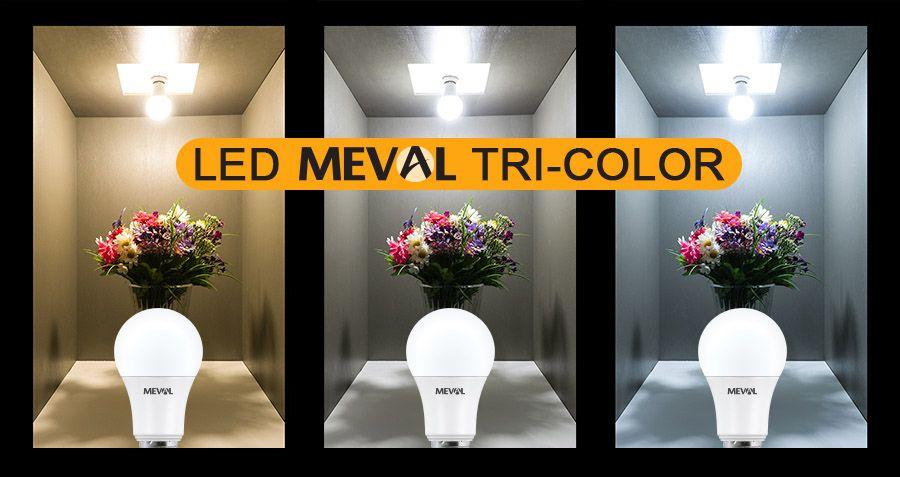 meval tri colour