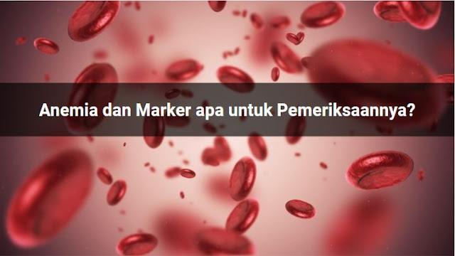 Anemia dan Marker apa untuk Pemeriksaannya