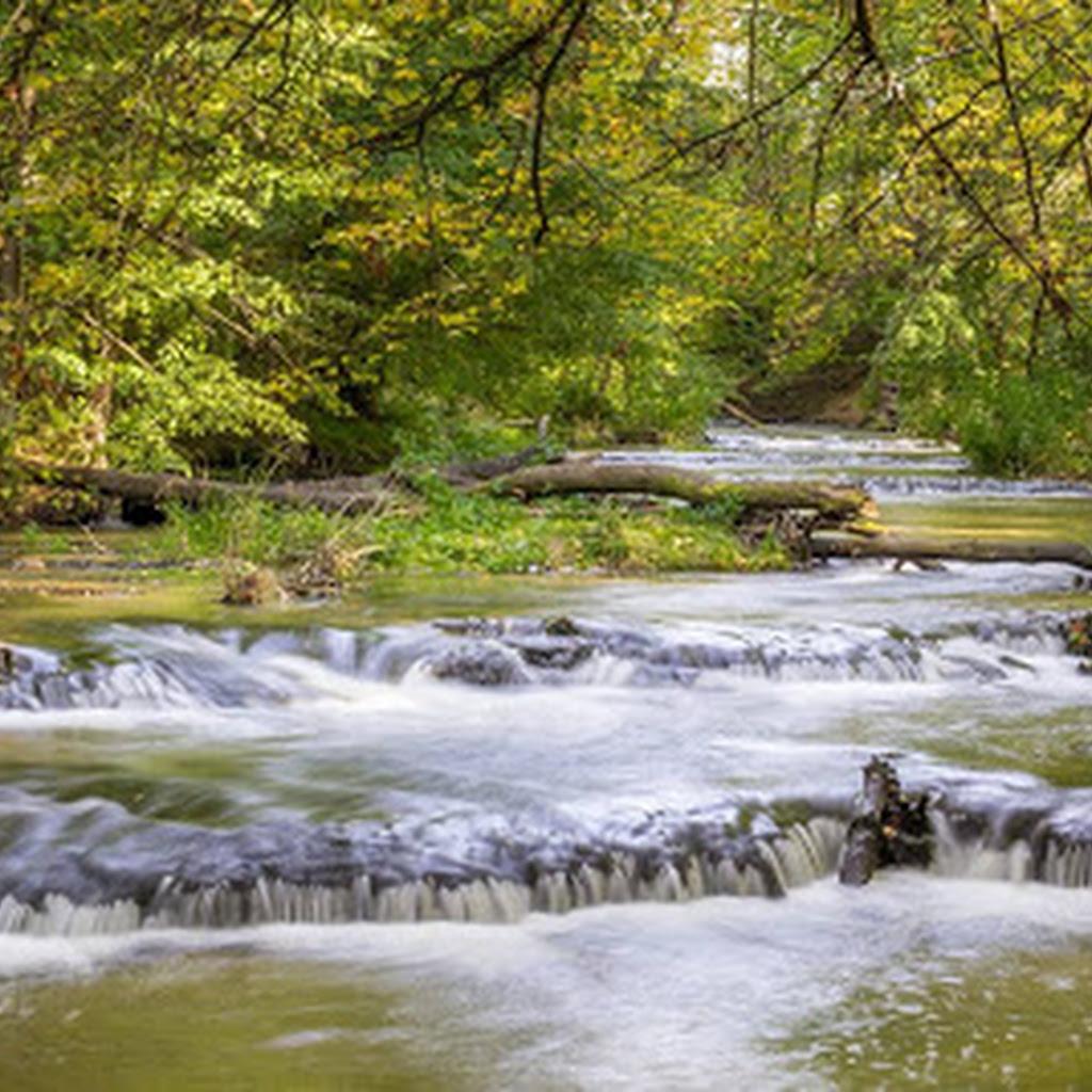 Posłuchaj Szumów nad Tanwią i zobacz wodospad na rzece Jeleń