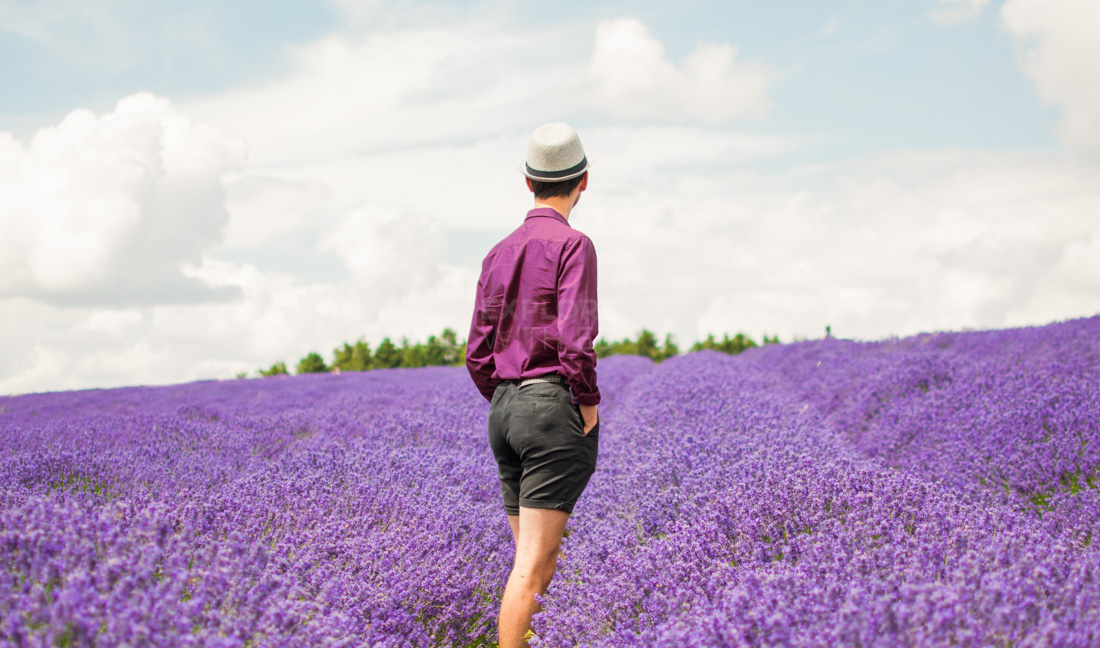 Explore With Ed enjoying a dreamy day trip at Cotswold Lavender Farm