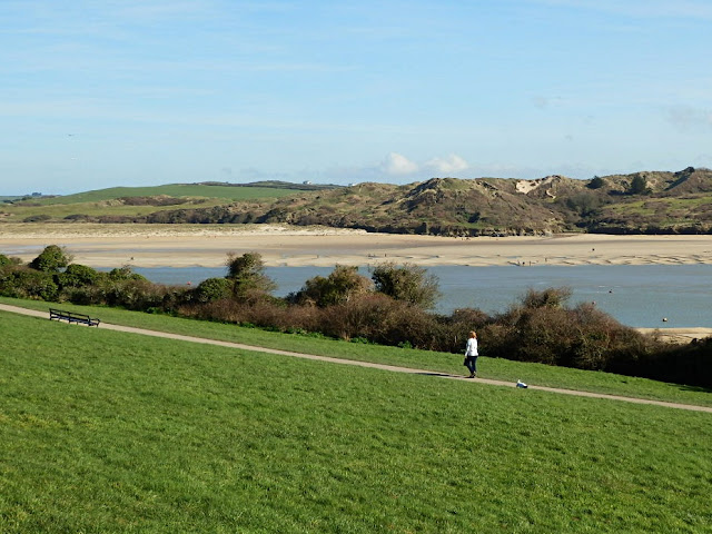Green fields at Padstow, Cornwall