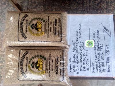 Benih Padi yang dibeli    MOH. IMAM MUNIF Nganjuk, Jatim.    (Sebelum packing karung).