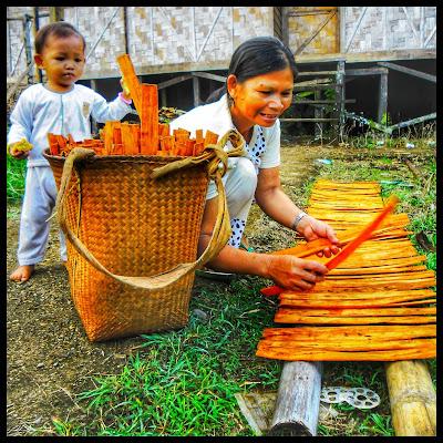 Daysk loksado menjemur kayu manis hasil dari hutan