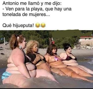 cuatro mujeres gordas toman el sol en la playa