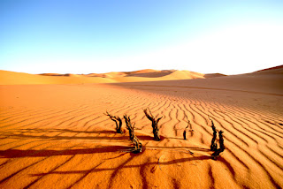 Memahami syafaat (3)    Perjalanan mencari Syafa'at di padang Mahsyar