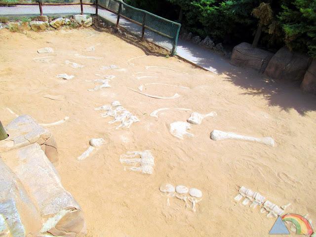 Excavación de huesos de dinosaurio en Paleosenda de Dinópolis