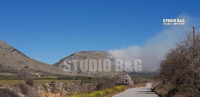 Σοβαρή πυρκαγιά στον Αμαριανό Αργολίδας
