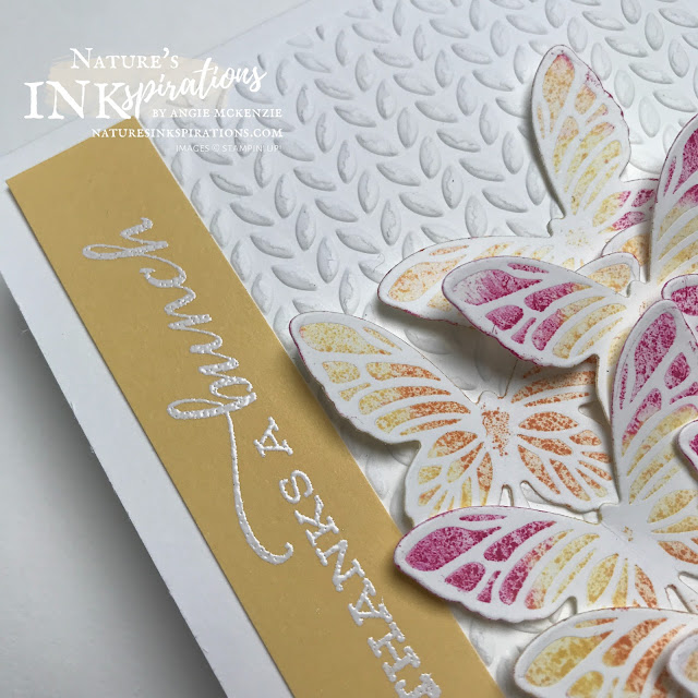 By Angie McKenzie for Kylie's International Blog Highlights - please VOTE for me; Click READ or VISIT to go to my blog for details! Featuring the Fluttering Dies, Greenery Embossing Folders and Celebrate Sunflowers Stamp Set; #stampinup #handmadecards #naturesinkspirations #thankyoucards #babywipetechnique #embossing #cardtechniques #stampinupdemo #makingotherssmileonecreationatatime #celebratesunflowersstampset #flutteringdies
