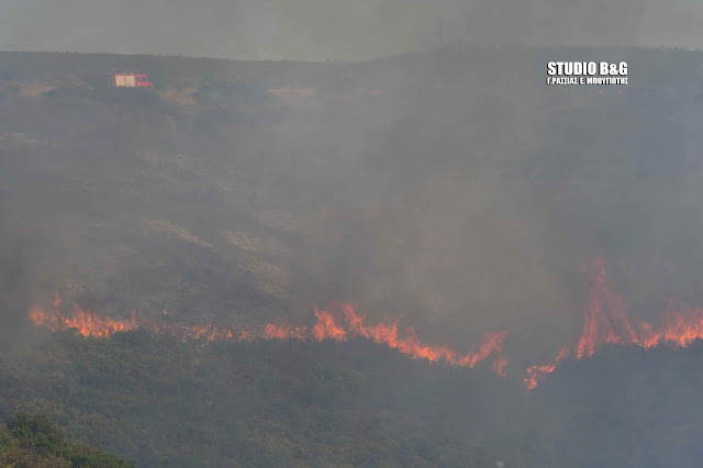 Πυρκαγιά σε ορεινή περιοχή του Δήμου Επιδαύρου