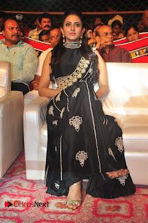 Actress Rakul Preet Singh at Sarrainodu Success Celebrations  0063