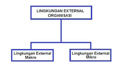 Apa itu Faktor Lingkugan Eksternal Organisasi ?