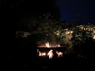 Animal fire pit at night with fire and ten foot tall sunflowers in background