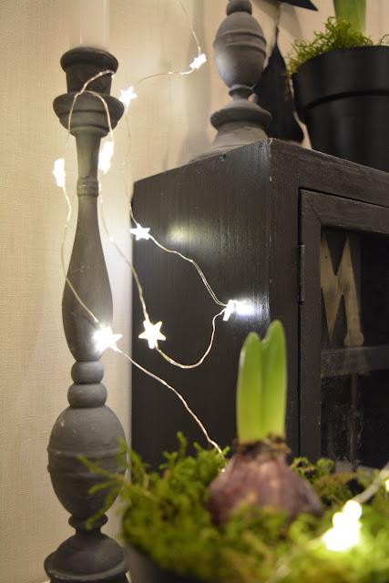 kynttilä hyasintti
