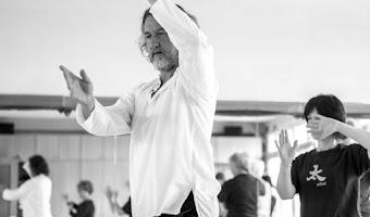 Entrevista Tai Chi - Luis Miguel Rocha Costa