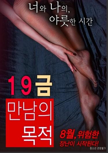 Sinopsis Film Korea Terbaru : The Purpose of An X-Rated Encounter (2016)