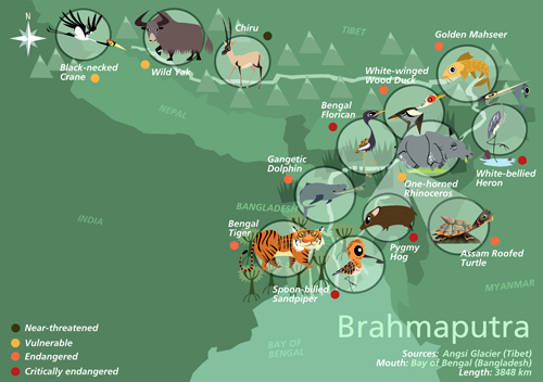green humour wildlife map of india Green Humour Wildlife Along Indian Rivers green humour wildlife map of india