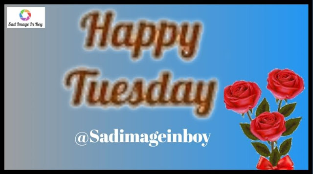 Happy Tuesday images   happy tuesday, have a good tuesday, tuesday motivational images