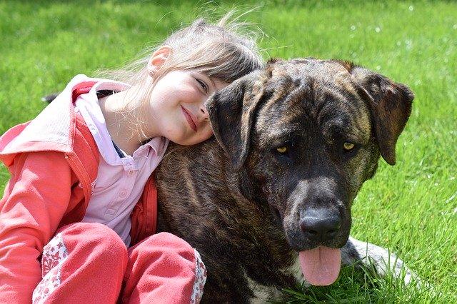 How pet breeding can improve children's behavior