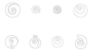 Simbolos maories y su significado Koru diseño