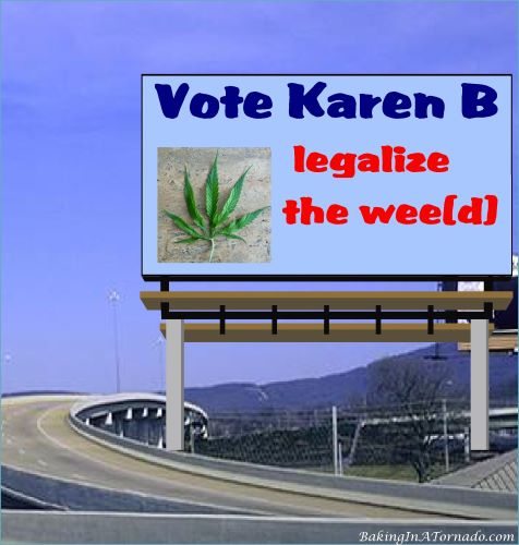 Vote Karen B, legalize the wee(d) | graphic created by and property of www.BakingInATornado.com | #MyGraphics