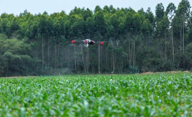 Công nghệ mới này đã giúp nông dân diệt 98% côn trùng gây hại chẳng tốn sức