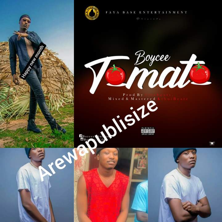 "Song review: Gombe state's ""Boycee"" bounces hard on Tomato 🍅 - A hit or miss #Arewapublisize"