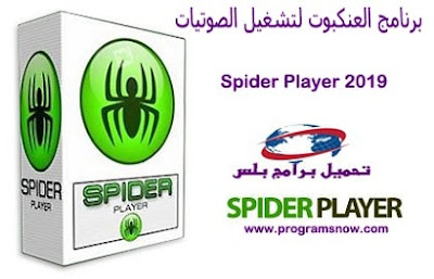 Spider Player 2019