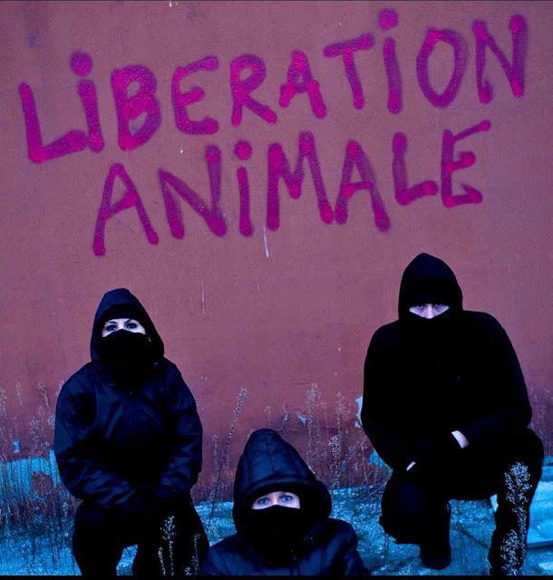 Ativistas radicais verdes aplicam os postulados algo filosóficos da Declaração Universal dos Direitos dos Animais